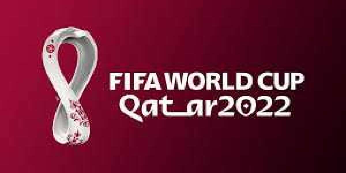 FIFA World Cup 2022 trending news   Top stories
