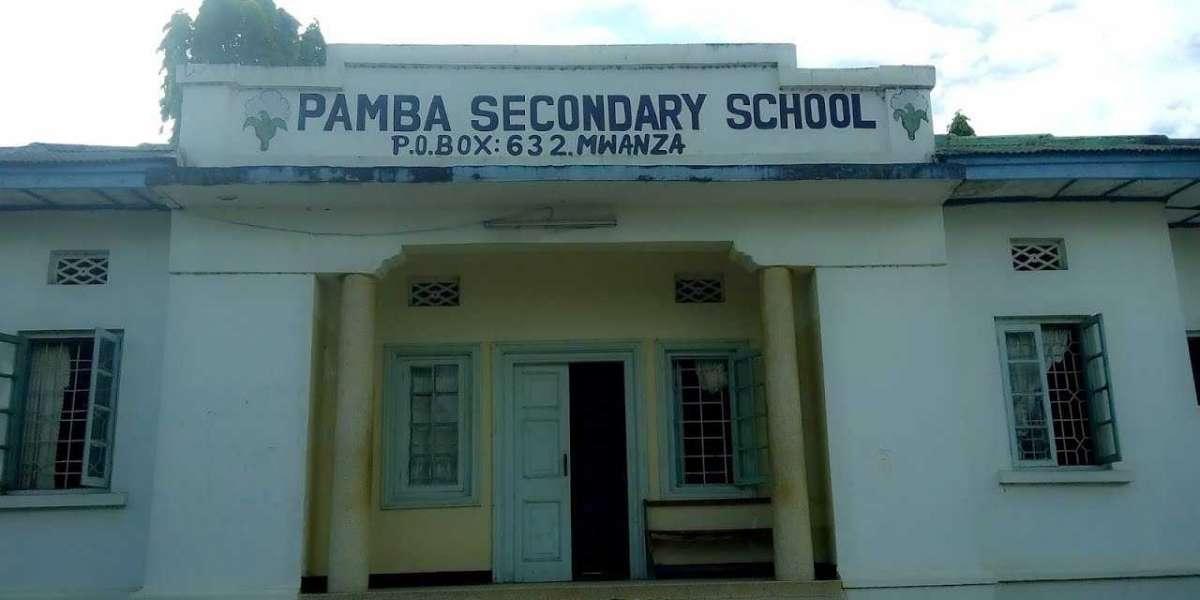 Pamba secondary school form six necta results